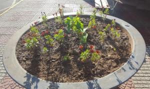 jardineras-775x460
